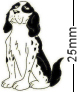 Springer Spaniel Dog Black Badge