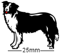 Border Collie Dog Badge